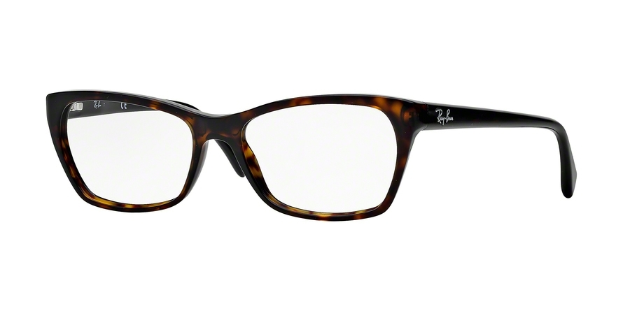 Ray-Ban Optical RX5298 2012